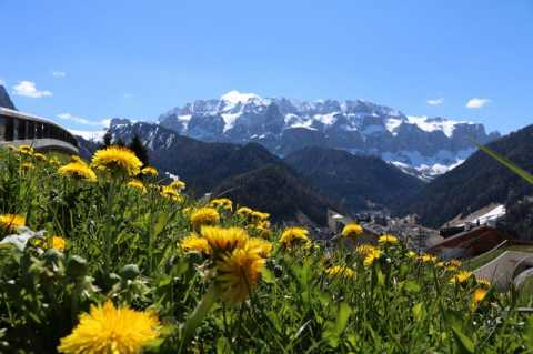 Spring amid the Dolomites of South Tyrol